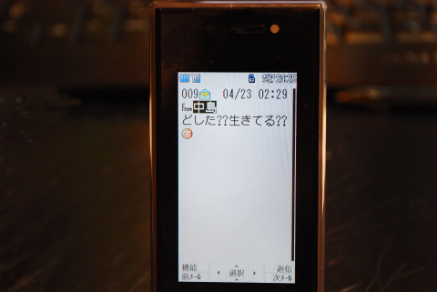 DSC_0787.jpg