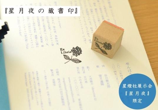星月夜の蔵書印.jpg