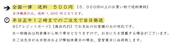 送料無料-トップ.jpg