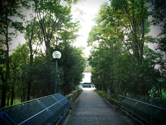 http://seitousha.sakura.ne.jp/sblo_files/seitousha/image/P1010076.jpg